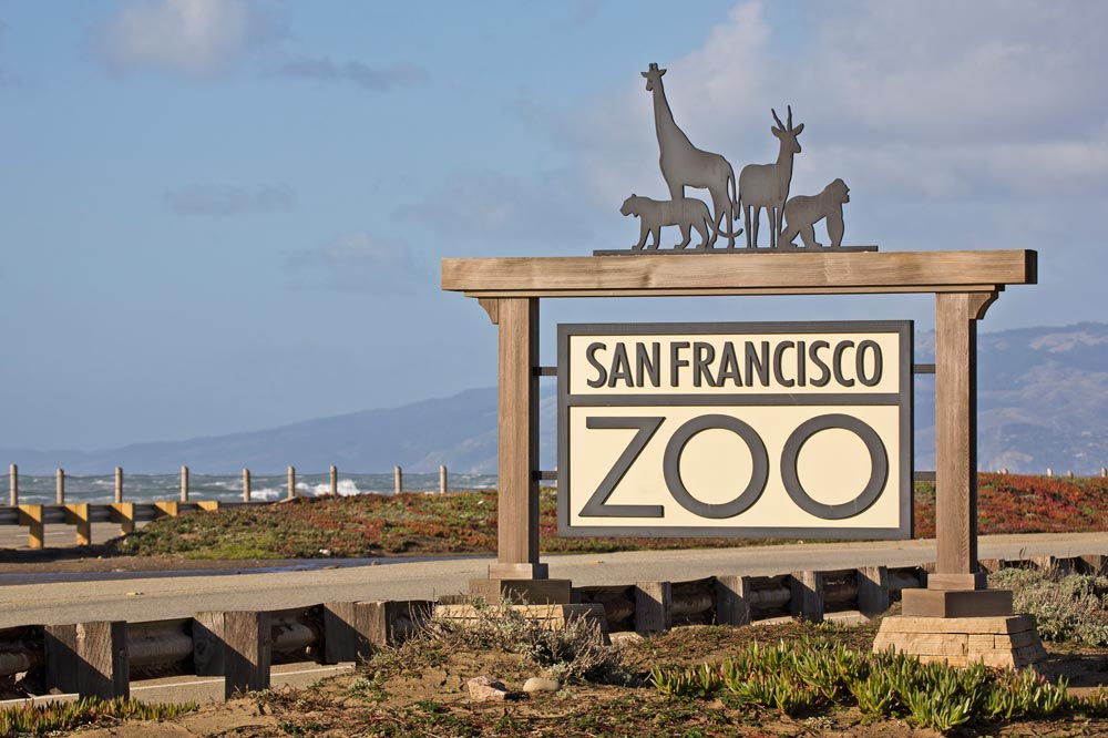 Things to do in  San Francisco Zoo